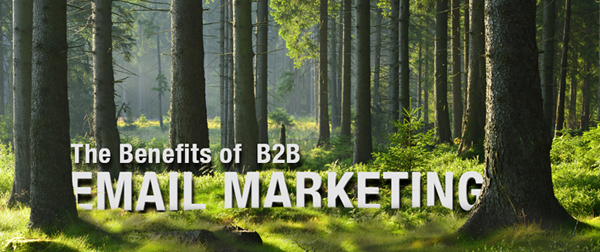 The Benefits of B2B Email Marketing
